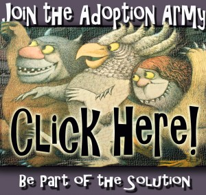 Join the Adoption Army!