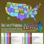 The-United-States-of-denied-adoption-infographic copy