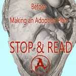 before making and adoption plan