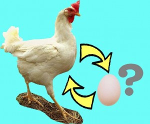 The  infertile chicken really wants it's own egg, but will adopt an egg if the chicken doctor fails it