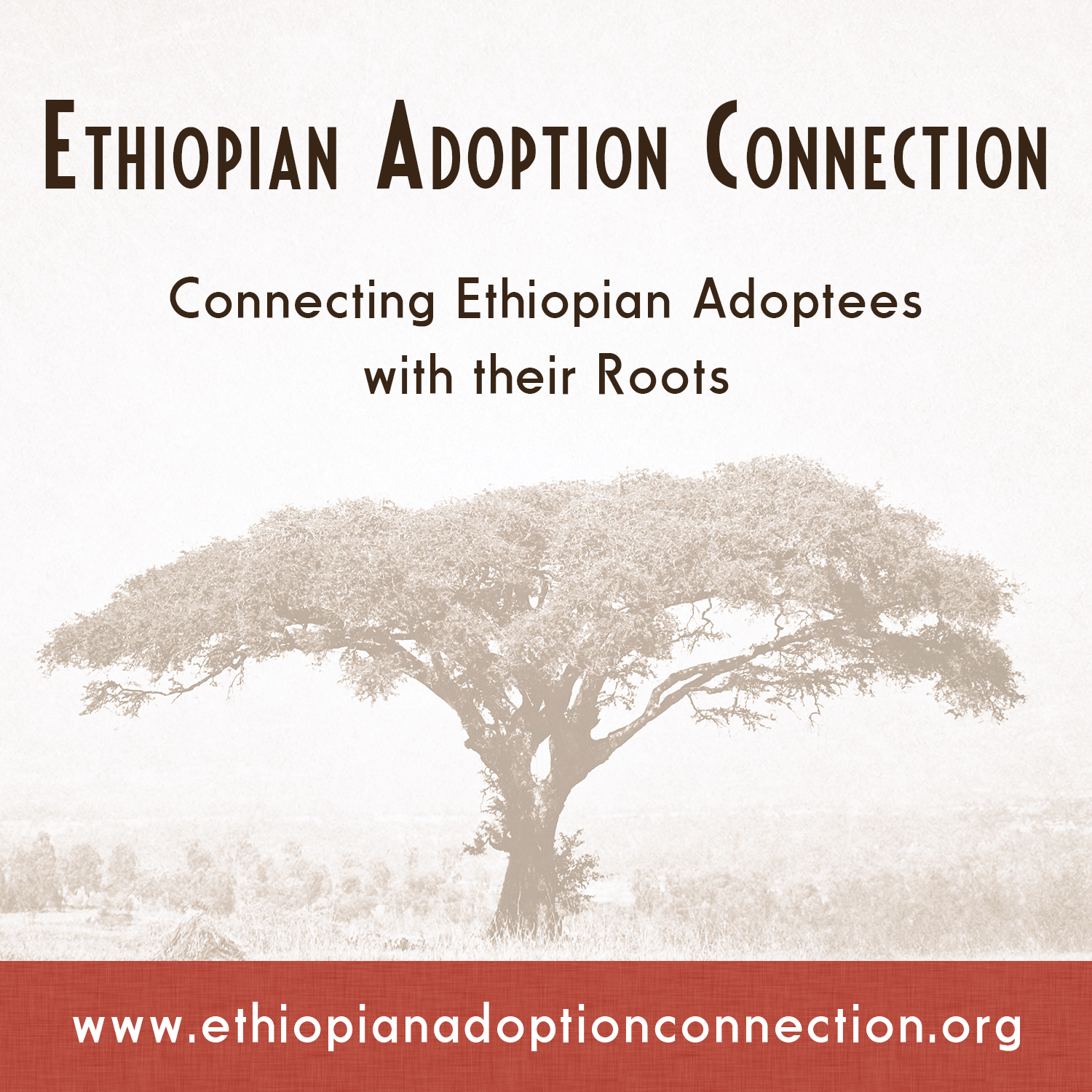 An Ethiopian Adoption Search Registry