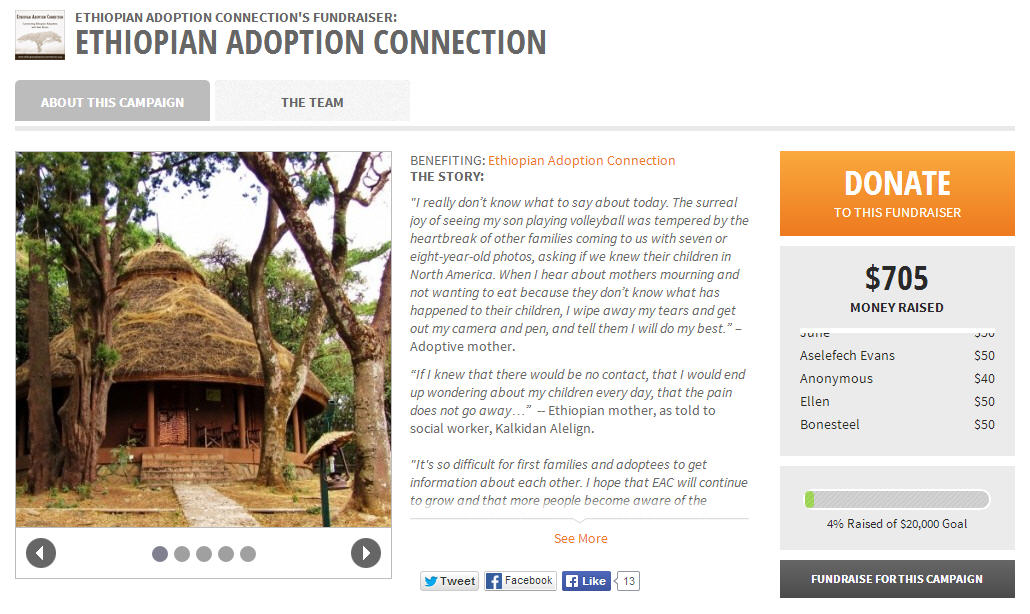 Supporting Ethiopian Adoption Connection