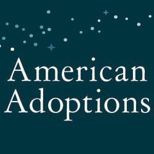 american adoptions influnce on Camden Stearns unethical adoption