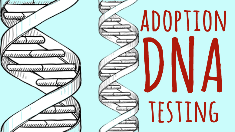 adoption DNA testing help and support